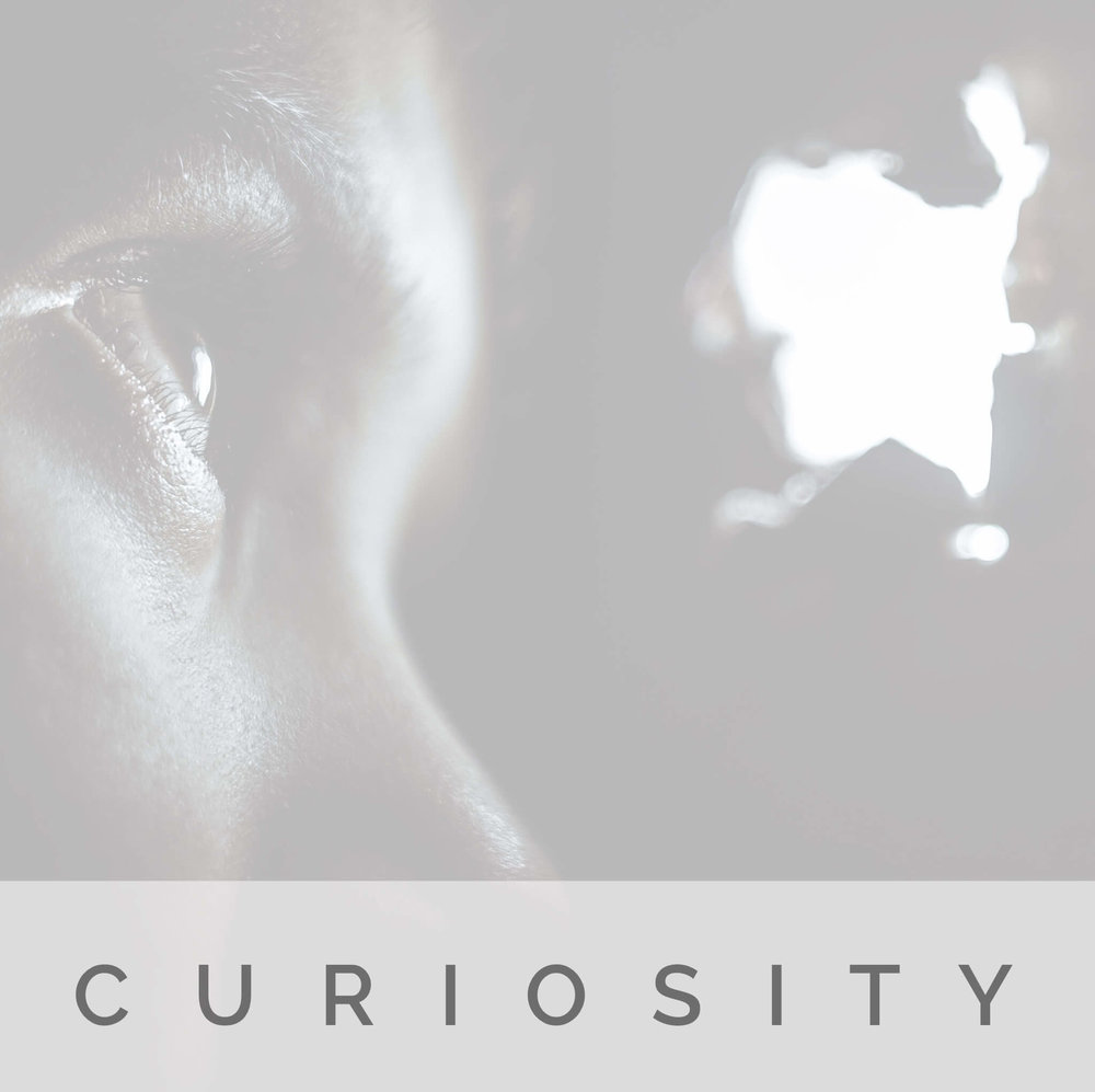 Curiosity | Strength | Signature Wisdom