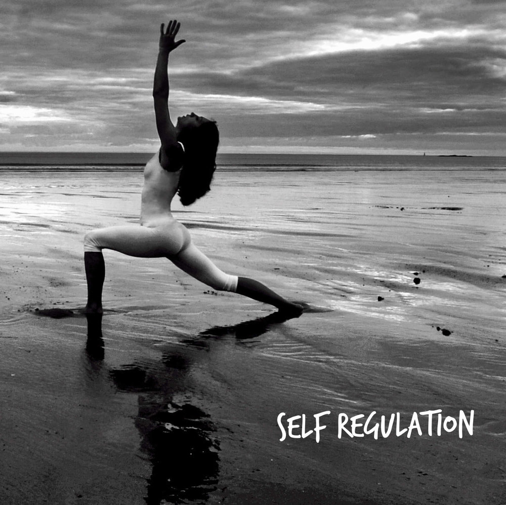 Self-Regulation | Strength | Signature Temperance
