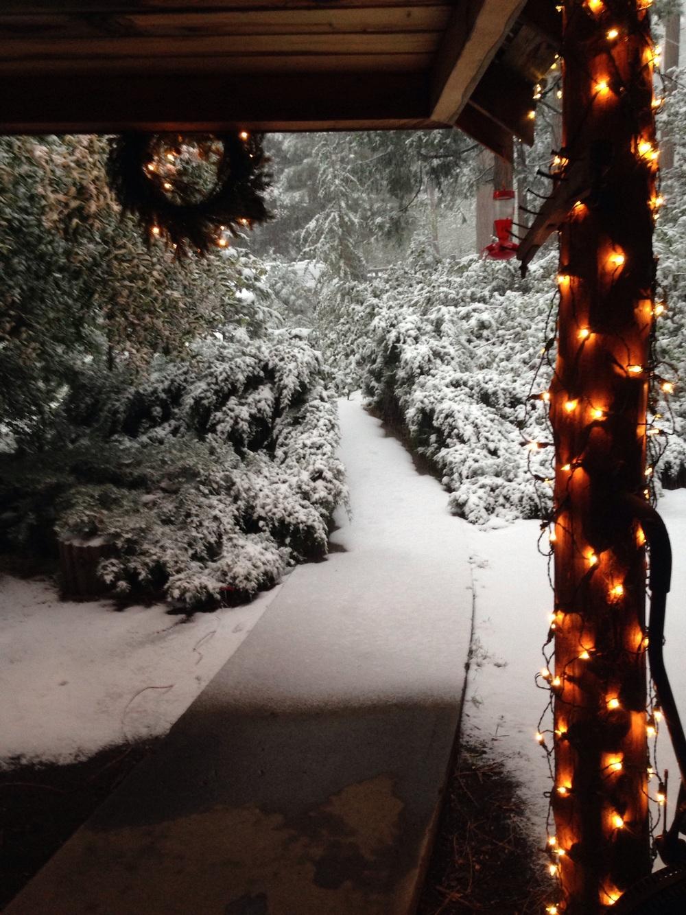 Waking to a winter wonderland.