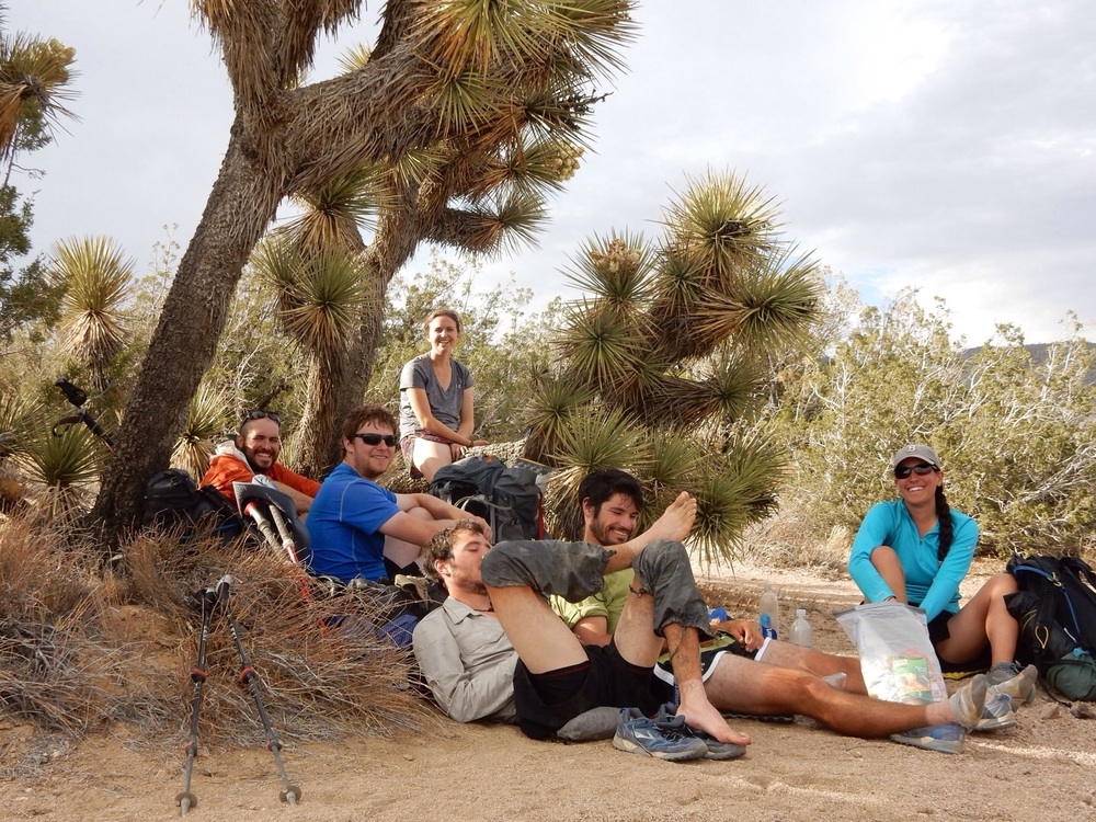 Relaxing in the shade of a Joshua Tree.
