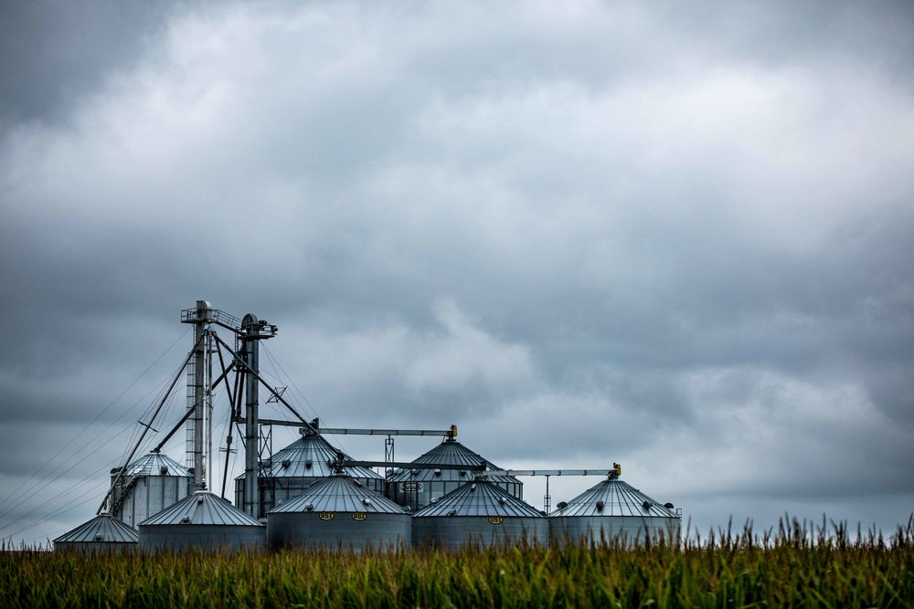 Farm_.jpg