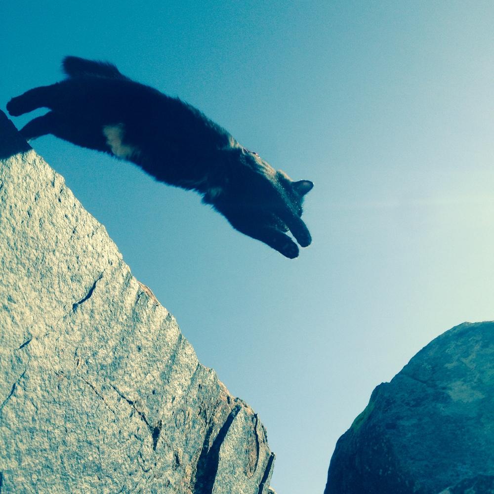 Jumping a gap at Moe's Valley
