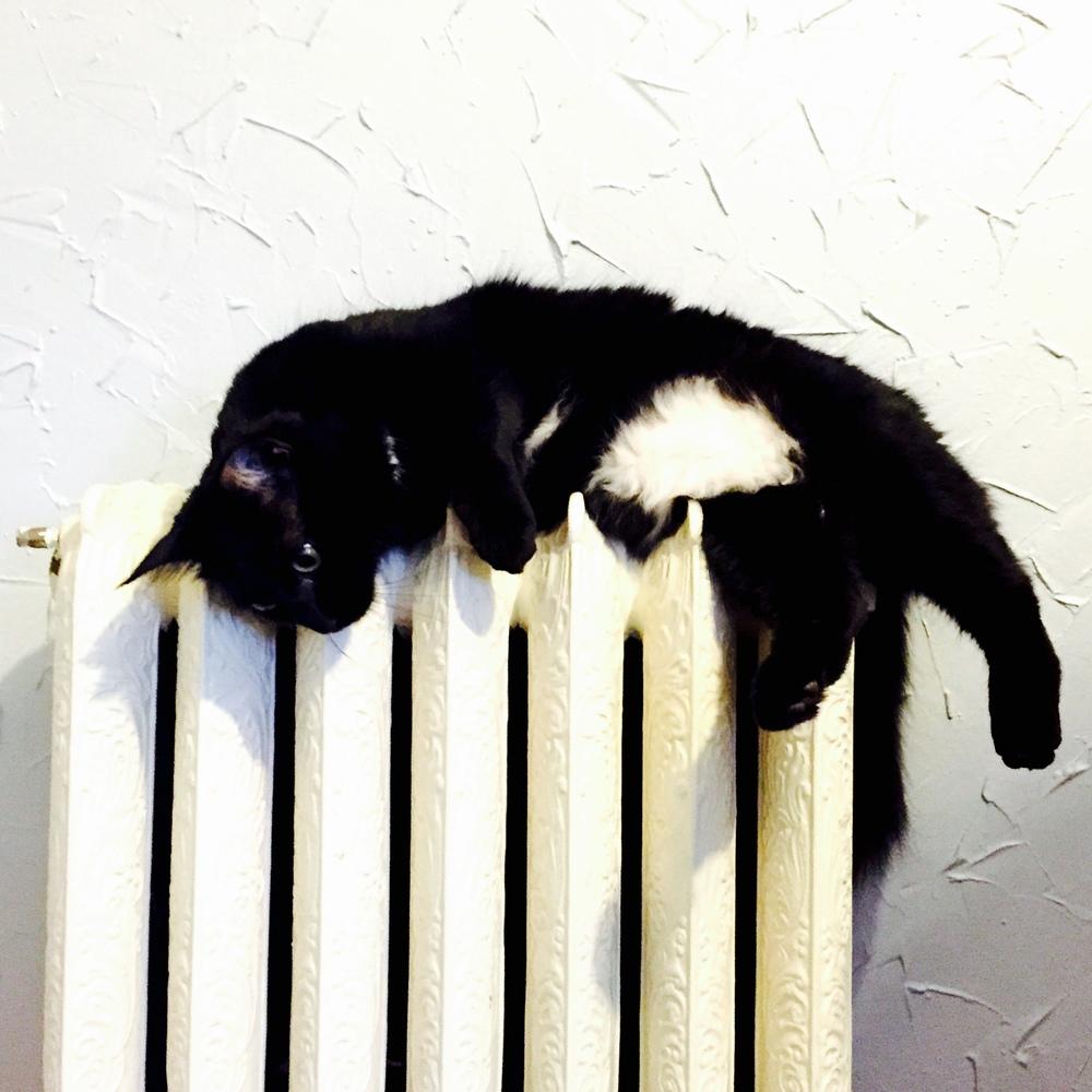 She loves the heater