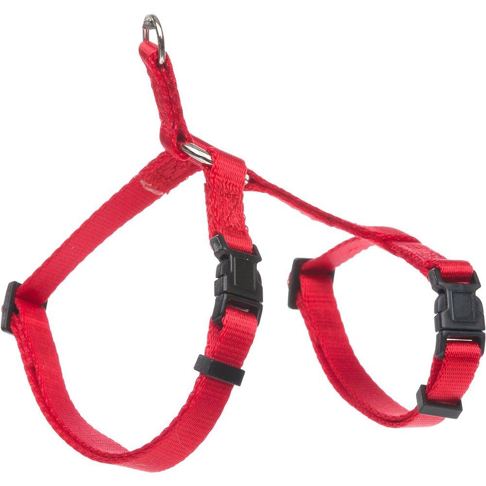 standard cat harness