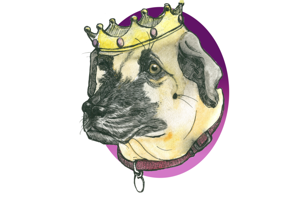 top_dog_by_gorshatastic-d82otll.png