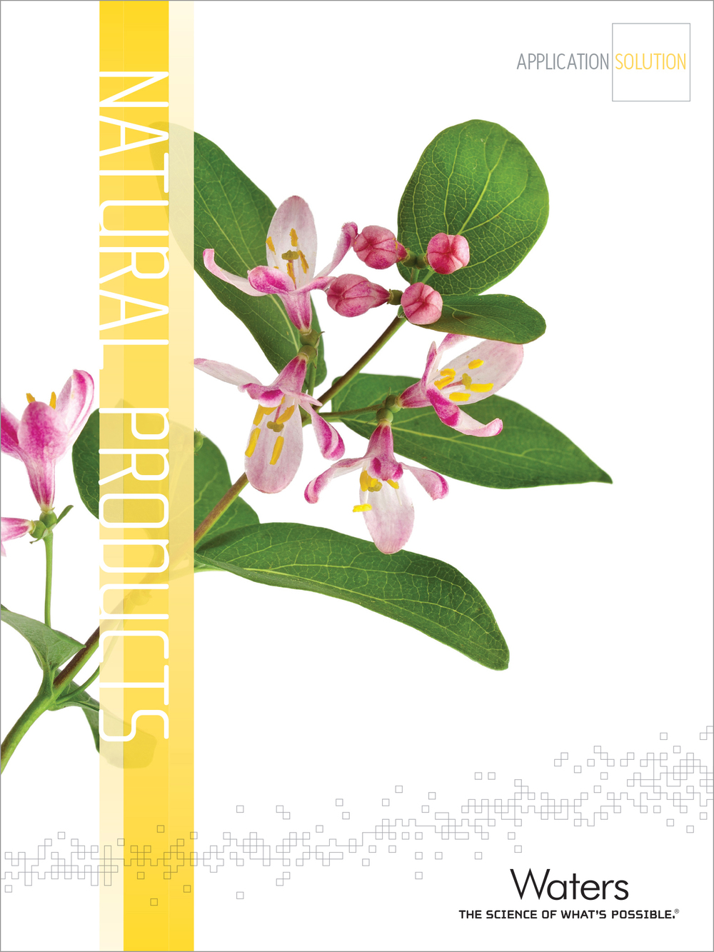 Natural Products Market Brochure