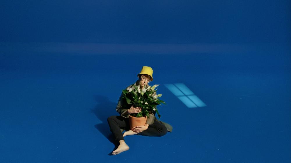 HC_Still_Plant2.png