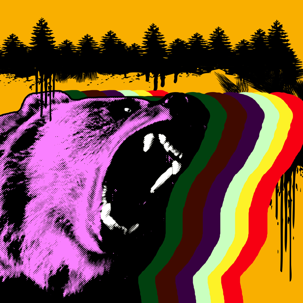 bear_color.jpg