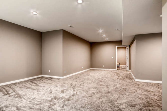 2123 S Juniper St Denver CO-small-029-11-Lower Level Family Room-666x444-72dpi.jpg