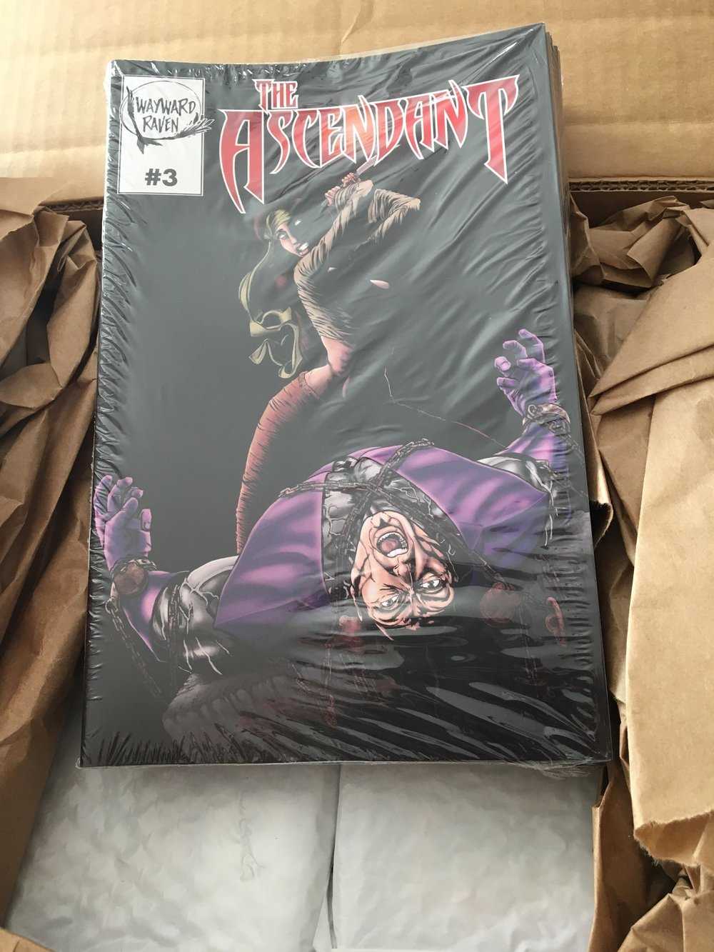 The Ascendant Issue 3. Also new to the con