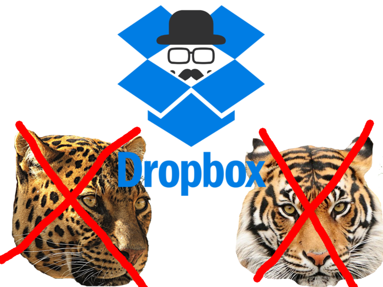 Dropbox Update