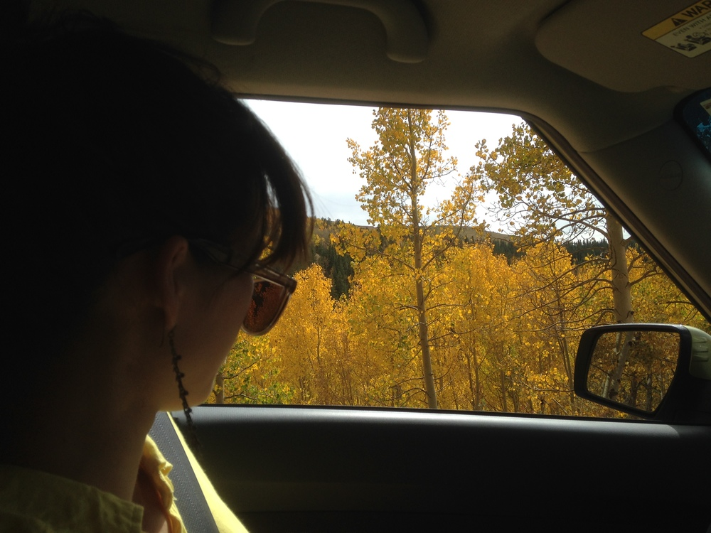 We pulled over a lot to stare at particularly lovely aspen patches and breathe fall air, and to get out and literally run to the trees. Photo by Kassondra Cloos