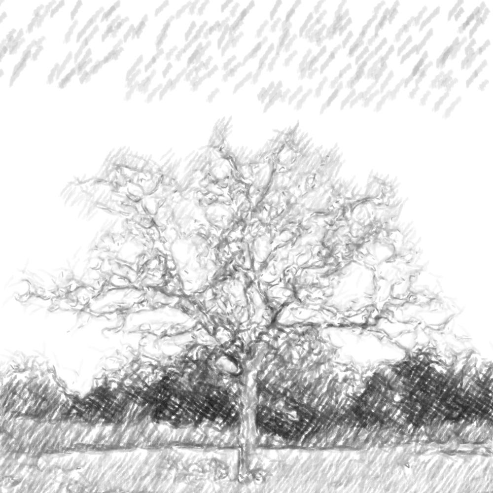 untitled-9456-3.jpg