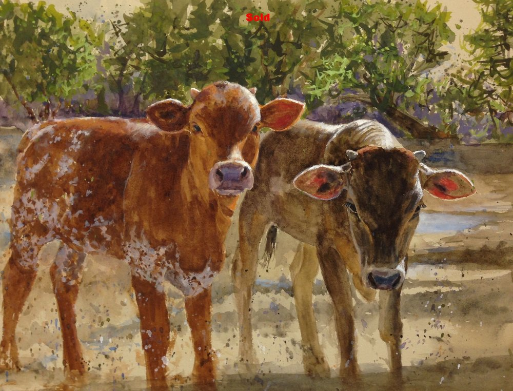 """Baby Longhorns""   Sold!"