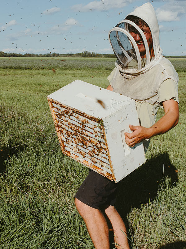 Honey bees would really rather not sting you, but don't take our word for it, look how we sometimes dress when near our hives.