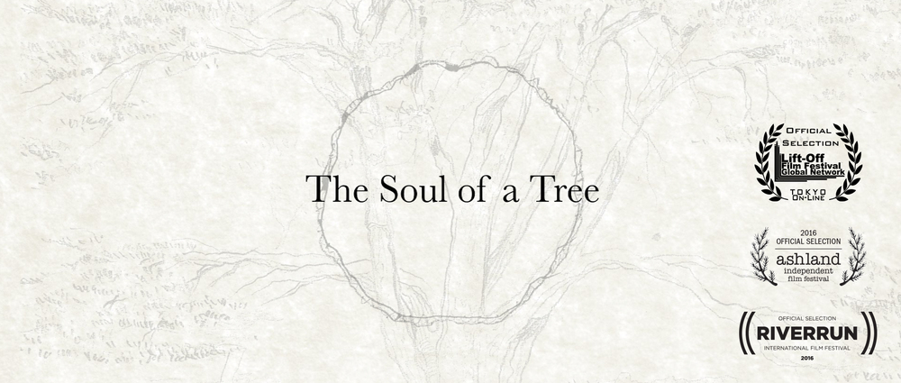 The Soul of a Tree Laurels v2.jpg