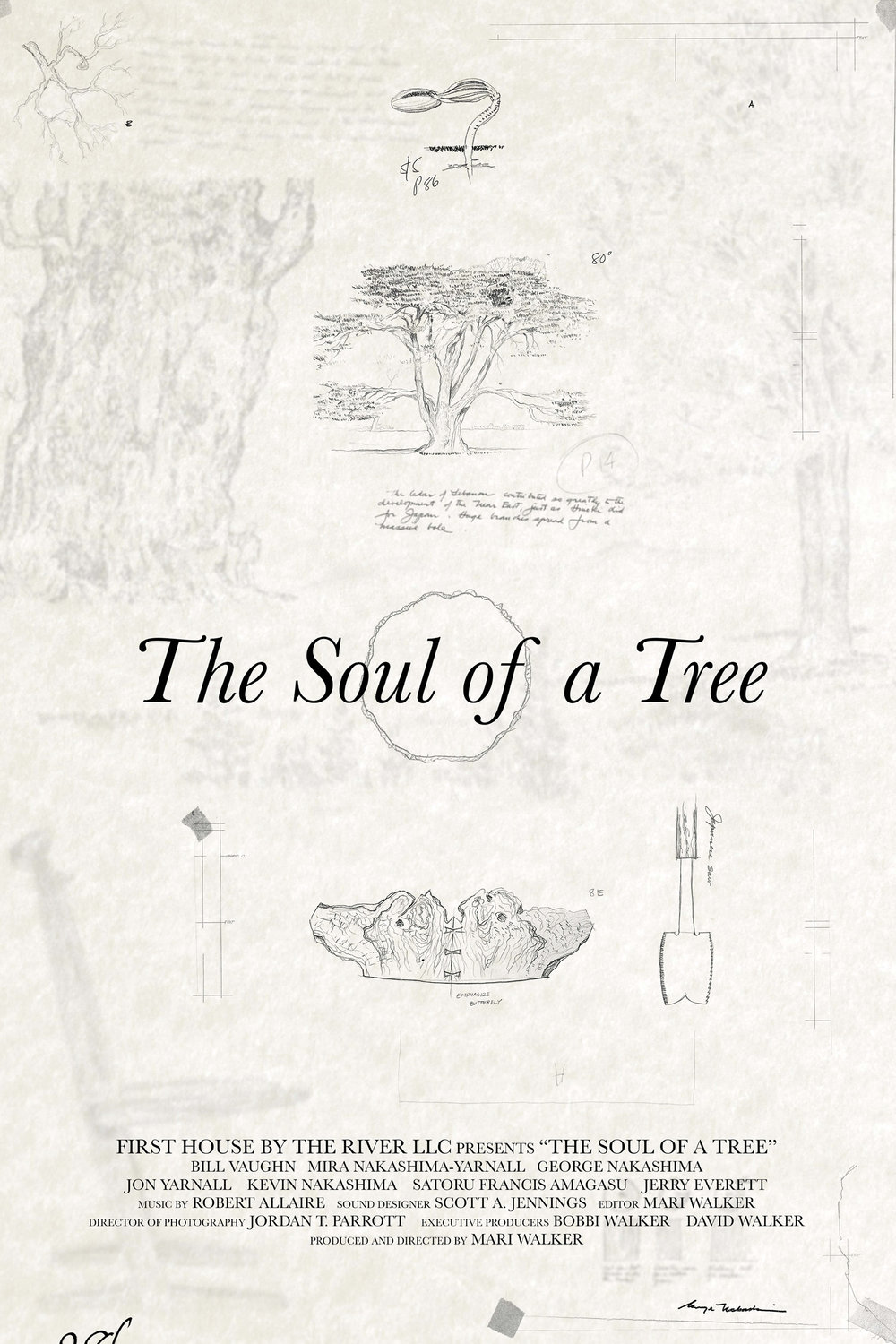 The Soul of a Tree Poster v5_compressed.jpg