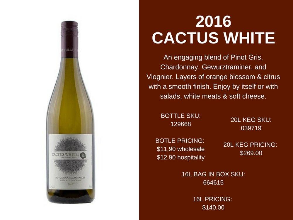 CACTUS WHITE.jpg