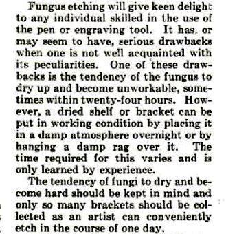 Drawing on a Fungus - a Novel and Pleasing Art (Popular Science, 1921)