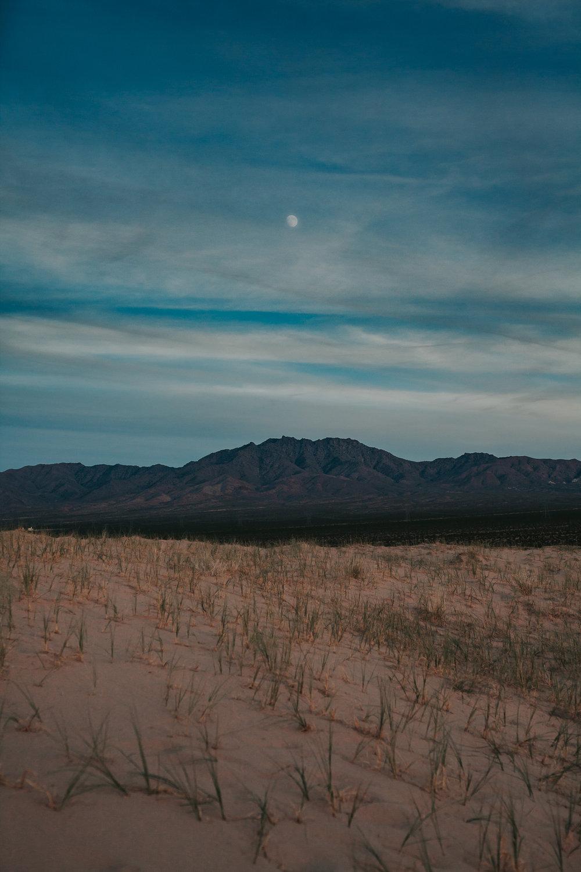brandy.andrew. kelso sand dunes mojave desert  engagement session-74.jpg