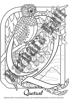 Q For Quetzal Coloring Page By Barbara Ball