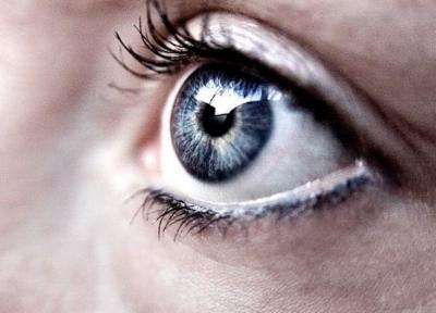 focus pic.jpg