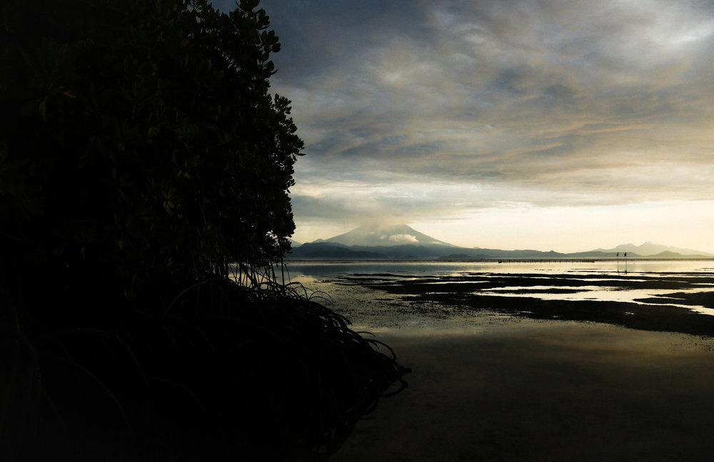 Sunrise on Nusa Lembongan from the Mangrove Forrest at 6:45am right before Sunrise. I walked out into the marsh fields witness pure tranquility.