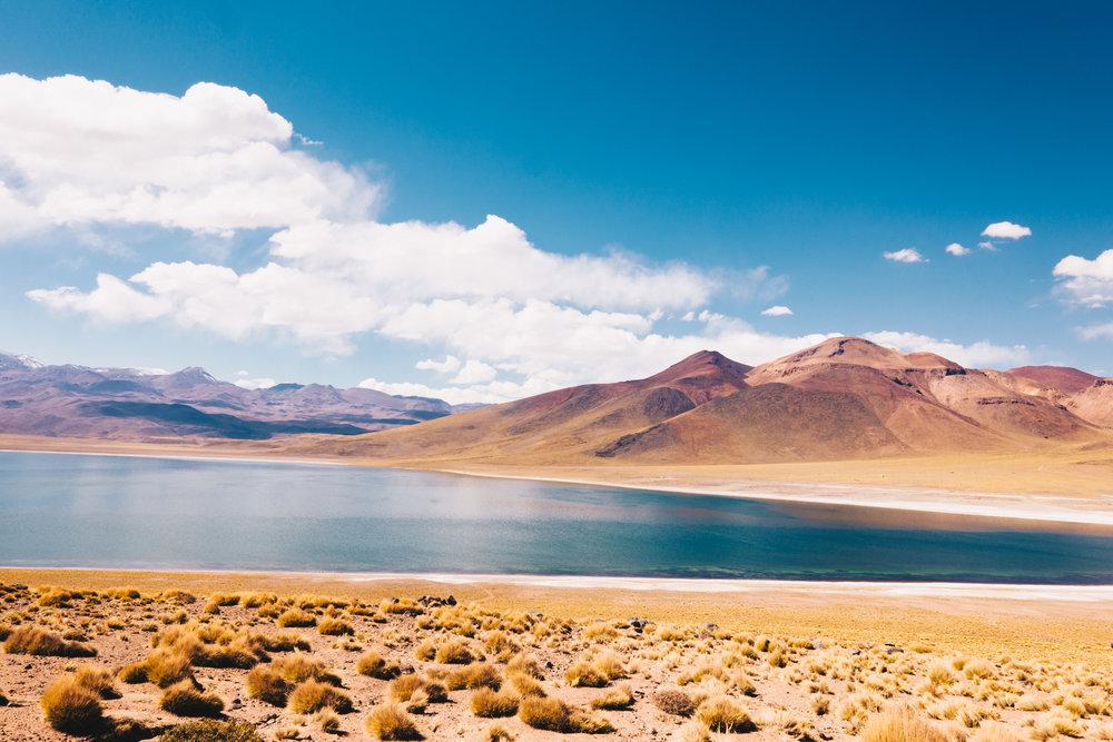 Atacama_Leica-54.jpg