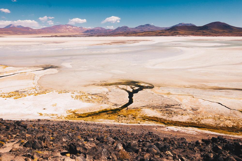 Atacama_Leica-63.jpg