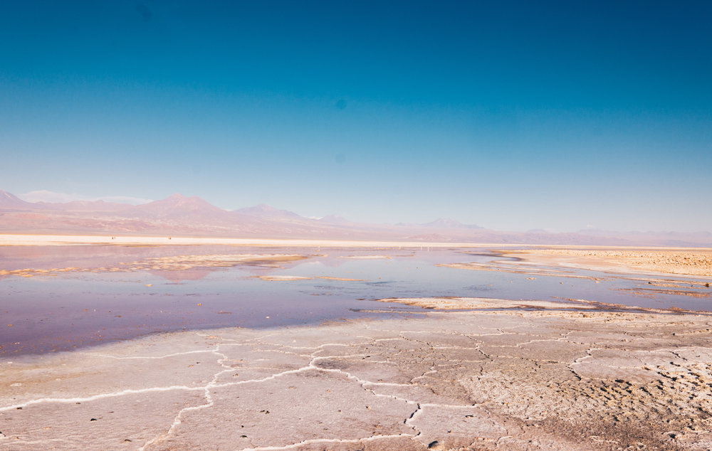 Atacama_Leica-67.jpg