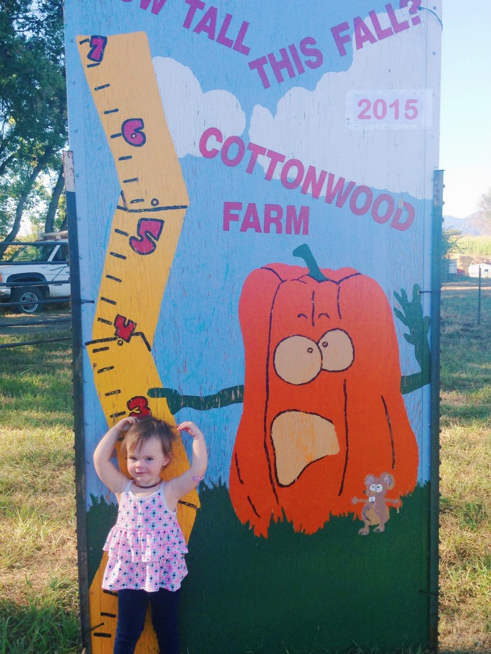 this little joy - cottonwood farm 2015