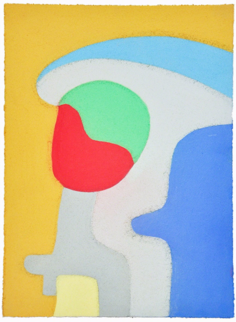 """Untitled (parrot),pastel on paper,15"""" x 11"""",2014"""