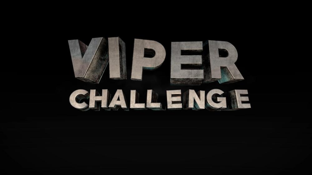 VIPER-Challenge-Opening-3-by-Masoud-Reza-Azimi.jpg