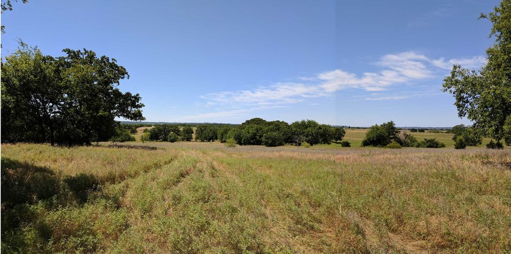 View South from proposed home site