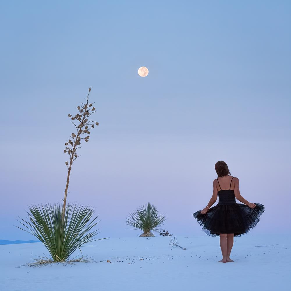 Desert Trio by Moonlight 14 by 14.jpg