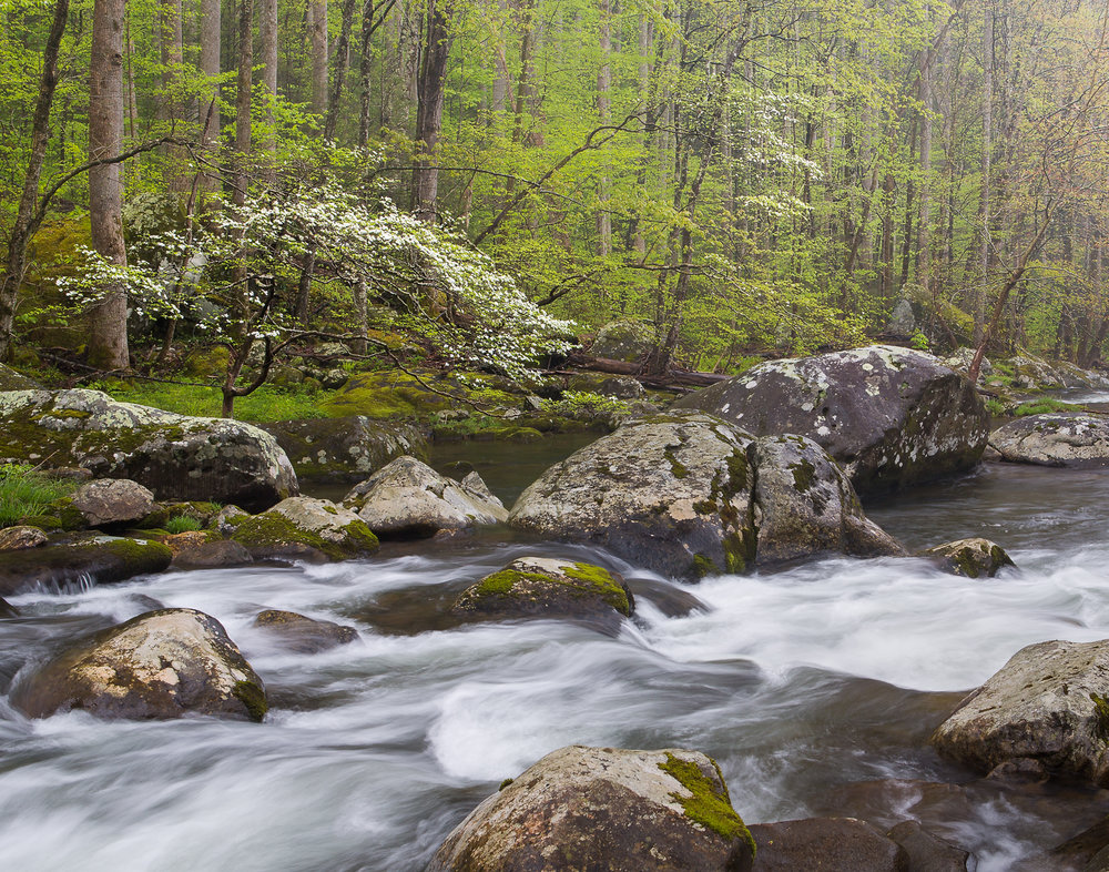 25 Great Smoky Mountains National Park, TN