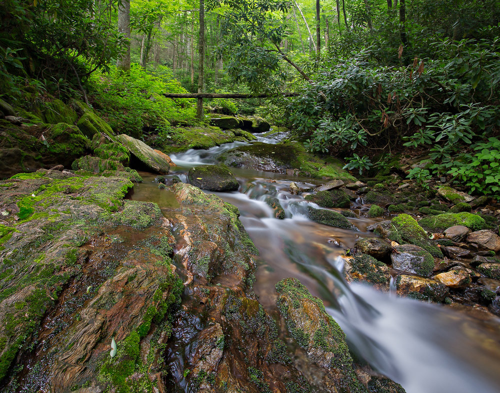 31 Black Mountains, NC