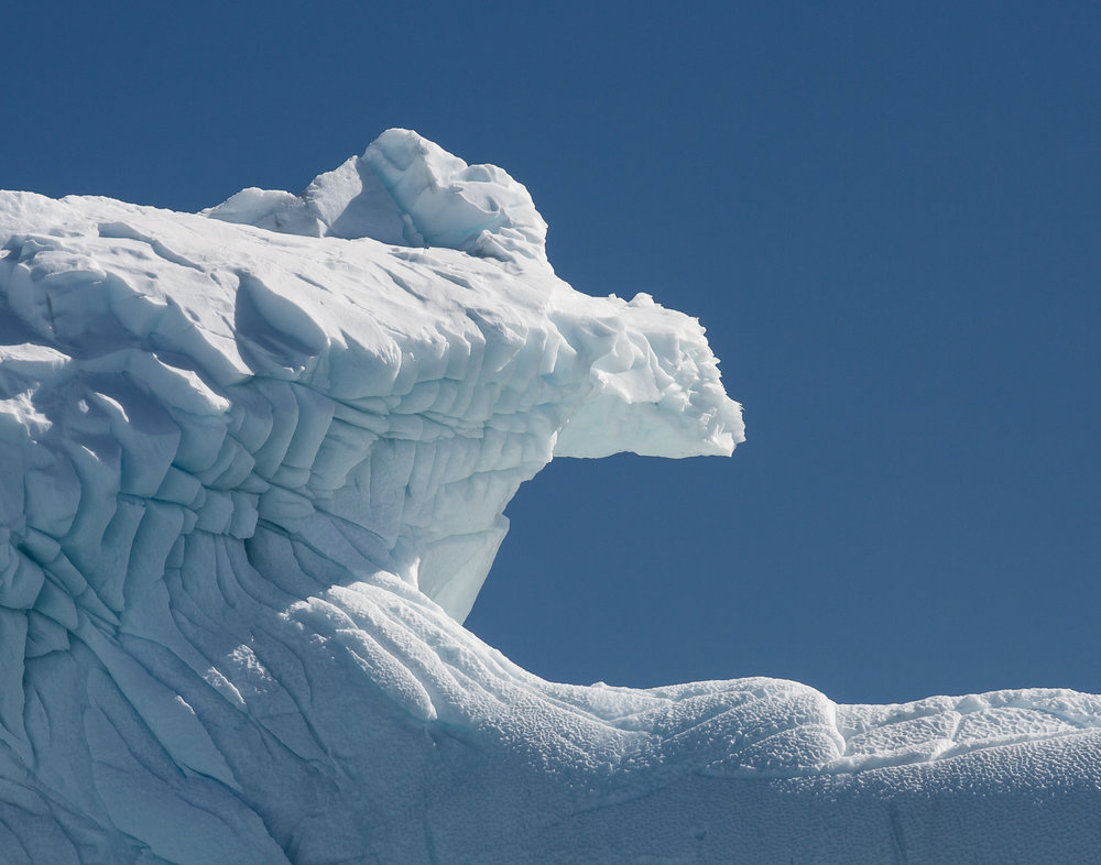 94 Cierva Cove, Antarctica