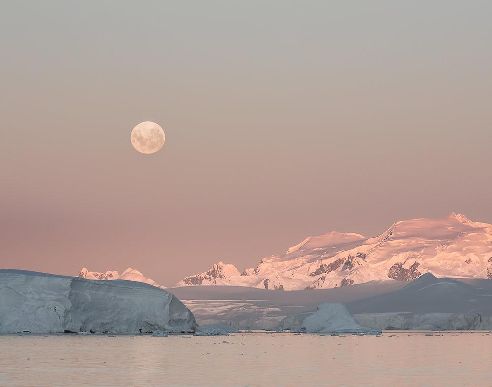 81 Lemaire Channel, Antarctica