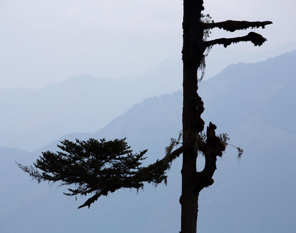 88 Bhutan