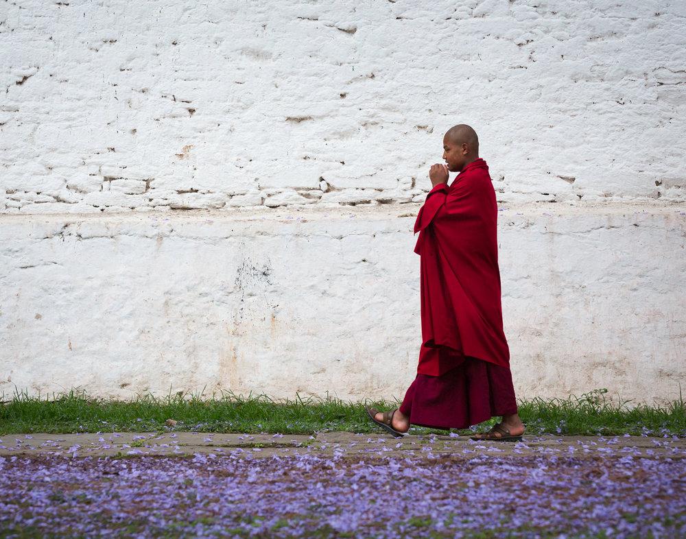 76 Buddhist Monk, Punakha Dzong, Bhutan