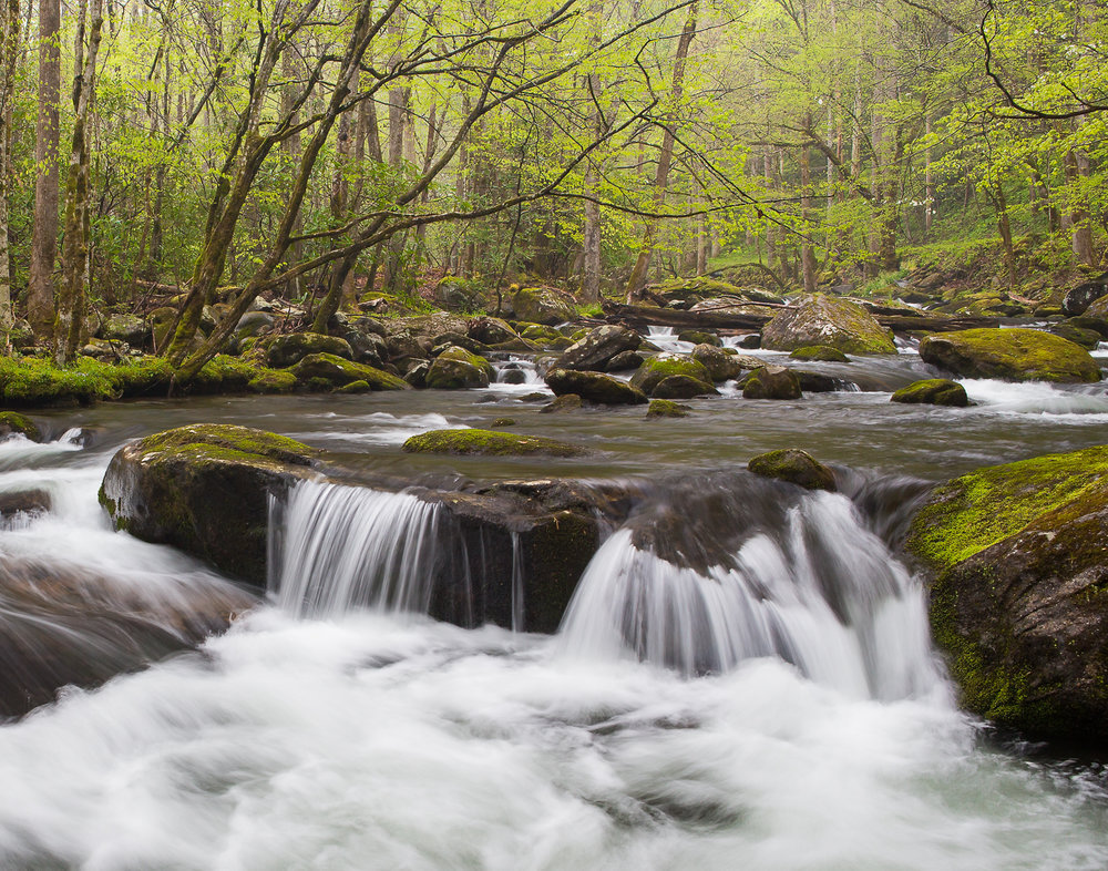 27 Great Smoky Mountains National Park, TN