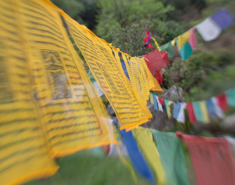 83 Prayer Flags, Chele La Pass, Bhutan