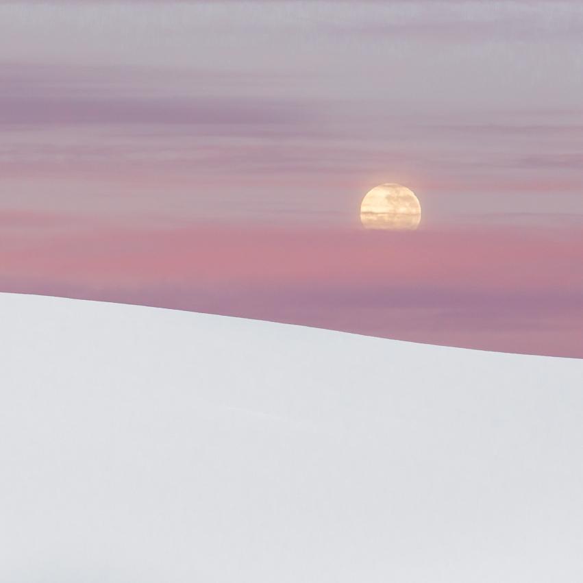 Antarctica in Pink