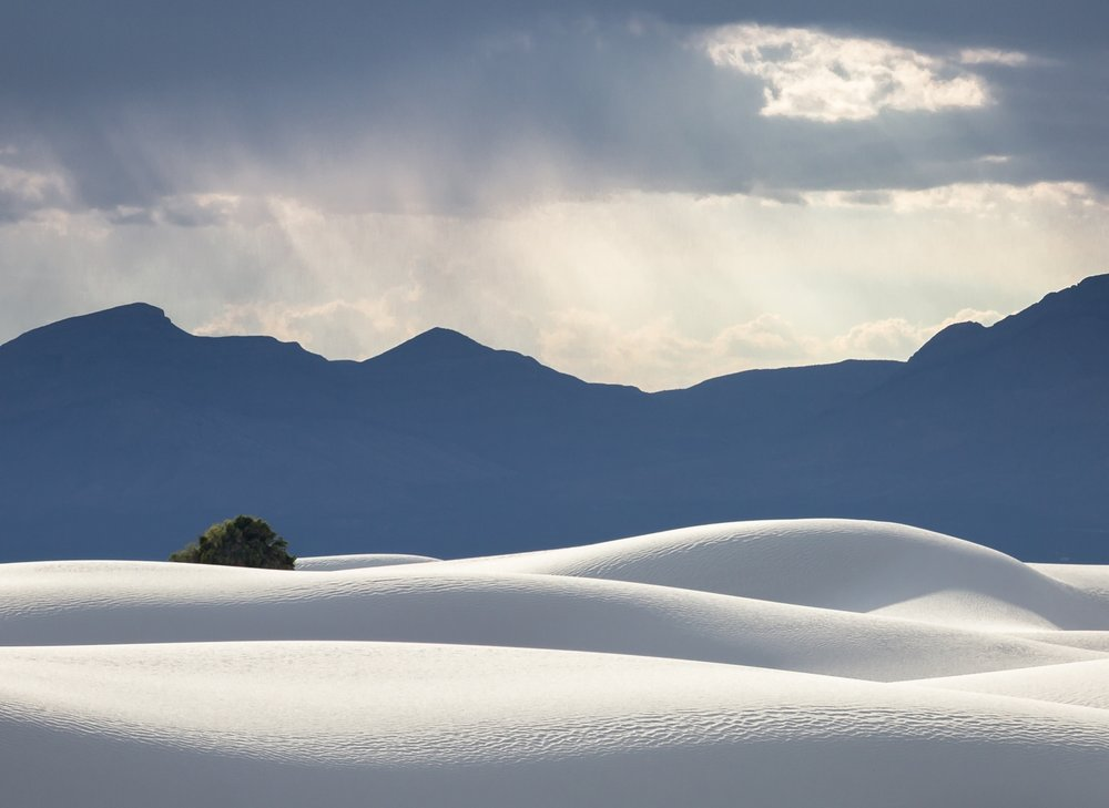 The Sensual Dunes