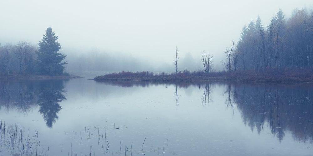 Quiet and Still
