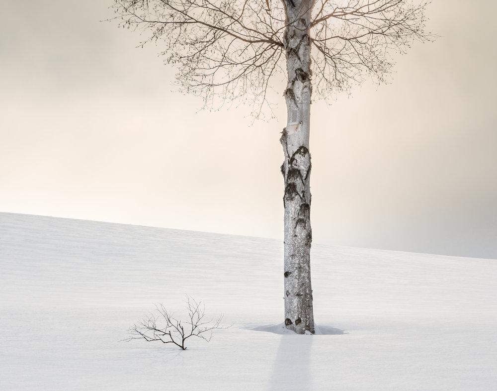 1. Hokkaido, Japan