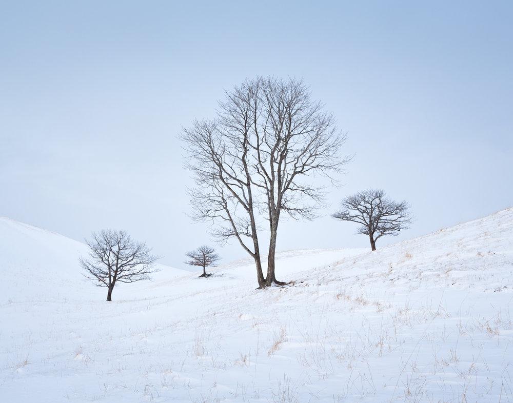 5. Eastern Hokkaido, Japan