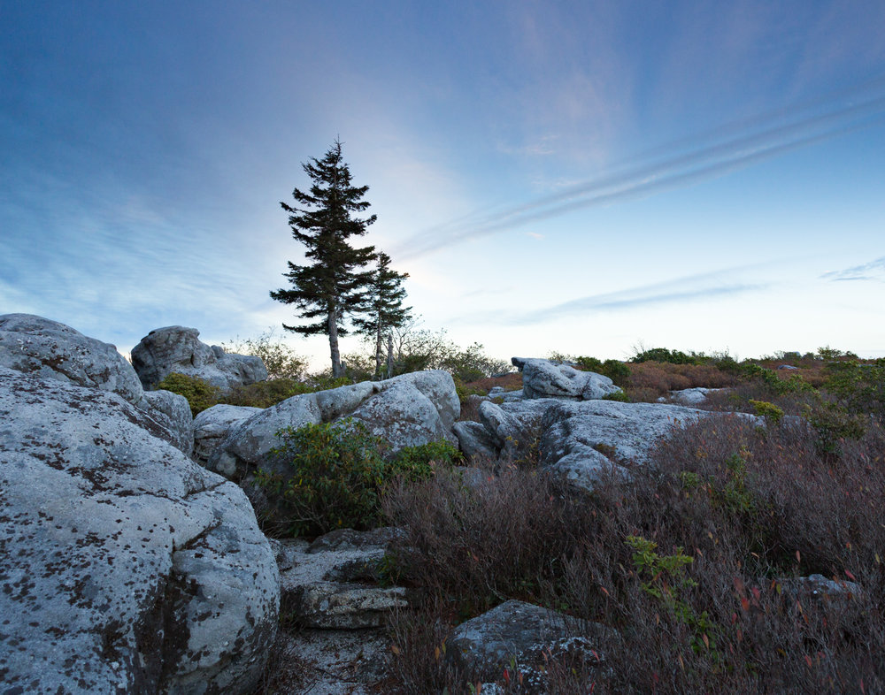 35. Dolly Sods Wilderness, West Virginia