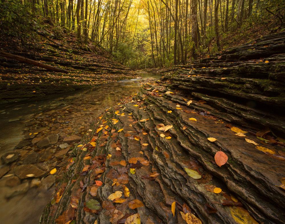 59. Devil's Fork, Jefferson National Forest, Virginia